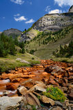 Unha river. Aran Valley, Pyrenees, Spain. Unha river, orange colored by oxide minerals. Aran Valley, Pyrenees, Spain Stock Images