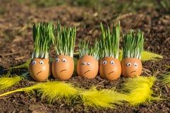 Unhappy egg family Stock Photo