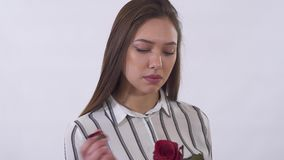 Close up portrait sad young beautiful woman pulling up petals from the red rose. Shooting in the studio on a white. Unhappy young beautiful woman is very sad stock video