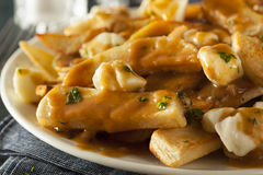 Unhealthy Delicious Poutine with French Fries Stock Image