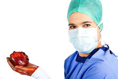 Unhealthy heart being removed Stock Photography