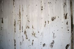 Unhealthy mold damaged walls, ceilings and Floors. On fungus mold weathered wall stock photos
