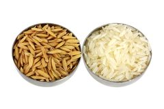 Unhusked asiatisk rice OCH polerad vit rice Royaltyfria Bilder