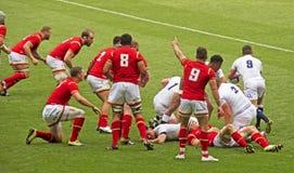 União do rugby de Inglaterra v Gales em Twickenham fotografia de stock