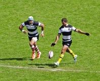 União do rugby em Twickenham Fotografia de Stock Royalty Free