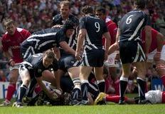 União do rugby: Exército contra a marinha Fotos de Stock Royalty Free