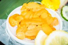 Uni sashimi Royaltyfri Fotografi
