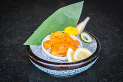 Uni sashimi Stock Photography