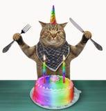 Unicórnio do gato com um bolo de aniversário imagens de stock royalty free