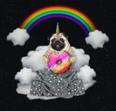 Unicórnio do gato com uma filhós na nuvem 2 ilustração royalty free