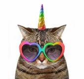 Unicórnio do gato nos vidros foto de stock royalty free