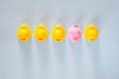 Unicidade, diferença, individualidade e posição fora do conceito da multidão imagem de stock