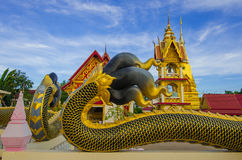 Unicità buddista di art Immagini Stock