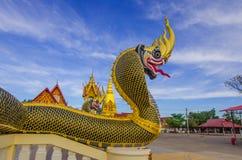 Unicità buddista di art Immagini Stock Libere da Diritti