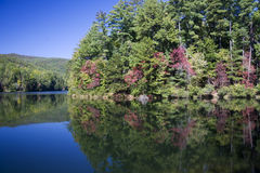 Unicoi Lake in Georgia. In Autumn with Reflections royalty free stock photography