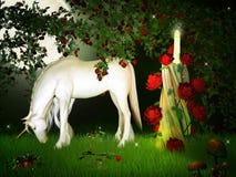 unicorn Fotos de Stock Royalty Free