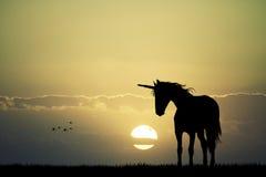 unicorn Imágenes de archivo libres de regalías