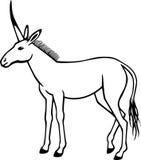 unicorn Immagini Stock Libere da Diritti