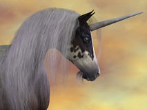 Unicorn Beauty Stock Photography