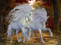 Unicorn Brothers stock illustrationer