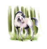 Unicorn Royalty Free Stock Photography