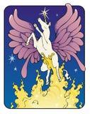 Unicorn Fairy Royalty Free Stock Images