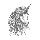 Unicorn fantastic horse sketch for tattoo design. Unicorn fantastic horse isolated sketch. Head of magic horned horse with wavy long mane. Tattoo, t-shirt print Stock Image