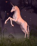 Unicorn in a Forest Glade. Digital render of a rearing unicorn in a moonlit forest glade Royalty Free Stock Image