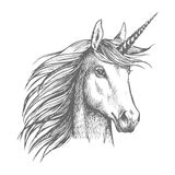 Unicorn horse sketch with horn Royalty Free Stock Photos