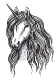Unicorn horse sketch of magic animal with horn. Head of mythical unicorn or fairy horse with wavy mane. Mythology and fairytale hero for tattoo and t-shirt vector illustration