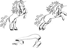 Unicorn horse sticker tattoo set3 Royalty Free Stock Photography