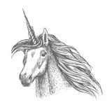 Unicorn magic horse head sketch Stock Photography