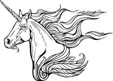 Unicorn with mane  of fire. Portrait of unicorn with mane of flames of fire Stock Photography