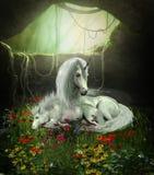 Unicorn Mare und Fohlen Stockfotos