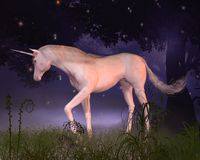 Unicorn in a Misty Forest Glade. Digital render of a unicorn in a misty forest glade Royalty Free Stock Photo