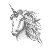 Unicorn mythic horse vector sketch. Unicorn mythical horse, heraldic equine head with horn and wavy mane. Mythic symbol of fantasy horse for astrology, fairytale royalty free illustration