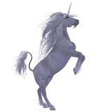 Unicorn over White Stock Image
