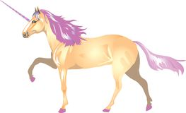 Unicorn With PinkHorn And Mane - Vector Illustration royalty free illustration