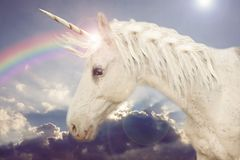 Unicorn in the rainbow. Sky stock photos