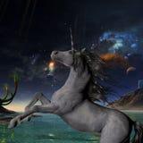 Unicorn Universe Fotografia de Stock