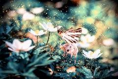 Unicornio blanco con las alas de la mariposa en la flor Foto de archivo libre de regalías