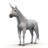 Unicornio con la piel en el fondo blanco Foto de archivo libre de regalías