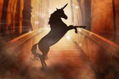 Unicornio de cuernos del caballo de la silueta en fondo encantado del bosque fotografía de archivo