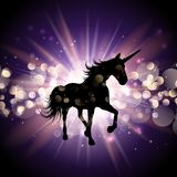 Unicornio en fondo del starburst Foto de archivo libre de regalías