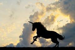 Unicornio en la puesta del sol Fotos de archivo