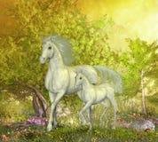 Unicornios en cañada ilustración del vector