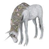 Unicorno bianco Fotografie Stock