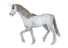 Unicorno bianco Fotografia Stock