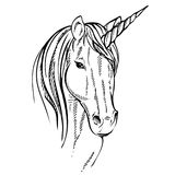 Unicorno di schizzo, illustrazione disegnata a mano dell'inchiostro Animale del cavallo dell'unicorno Immagini Stock Libere da Diritti