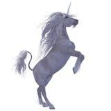Unicorno sopra bianco Immagine Stock